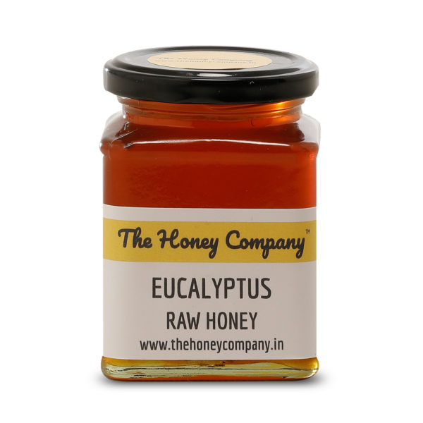 Eucalyptus550gmsFront